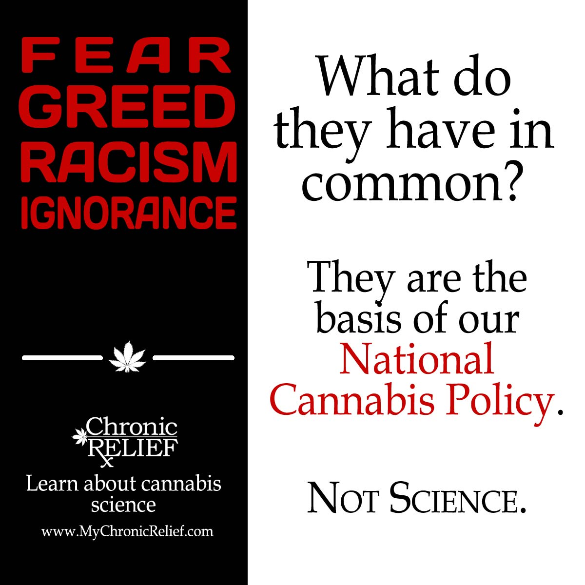 ignorance fear racism Ignorance and racism  therefore a state of ignorance is also often a state of fear, and therefore ignorance can cause fear, and then hate.