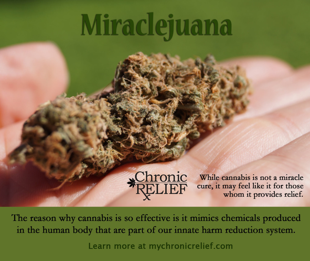 how to get medical marijuana for pain